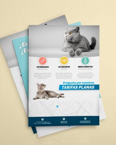 Flyers configurables